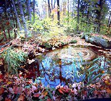 Abbey Brook Fall Vortex by HagstarStudios