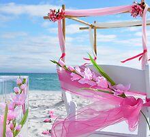 Orange Beach Weddings by beachwedding