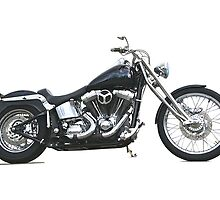 2003 H.D. Softail Custom 1 by DaveKoontz
