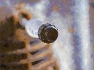 Child of Davros by buttonpresser