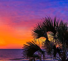 Tropical Sunrise by Kenneth Keifer