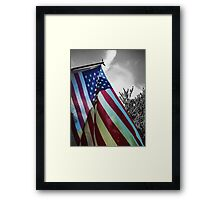Home of the Free Framed Print