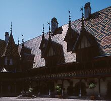 Well and courtyard Hotel de Dieu Beaune France 198404290020 by Fred Mitchell