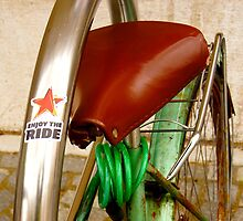 ENJOY the RIDE by sofficino74