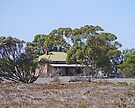 Old farm house, South Australia by Margaret  Hyde
