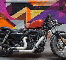 Harley on Hosier Lane by Pauline Tims