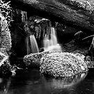 Hidden Stream by Ron C. Moss