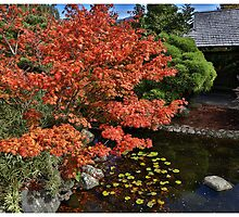Japanese Garden  by eisblume