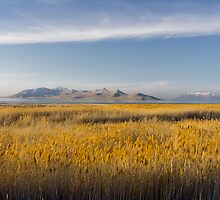 The Great Salt Lake by Alan Mitchell