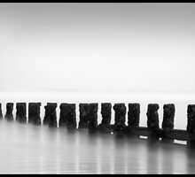 Posts in the mist by Dezzy12345