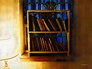The Pastor's Bookshelf by RC deWinter