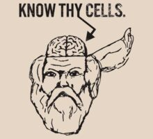 Know Thy Cells by thescientish