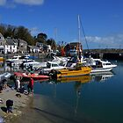Padstow, Cornwall, UK by lynn carter