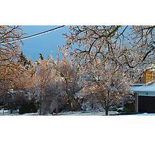Winter blast Photographic Print