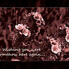 Wishing You Were Somehow Here Again Card by Corri Gryting Gutzman