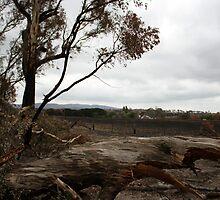 Bushfire Seaton Vic – Photo taken on 23 January 2013 by OzNatureshots