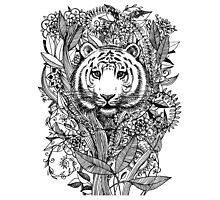 Tiger Tangle in Black and White Photographic Print