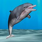 Smiling Dolphin by Vac1