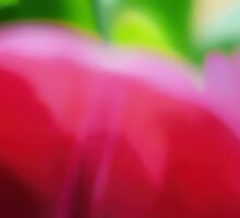 Colors Of Spring Abstract - Long Horizontal by Menega  Sabidussi
