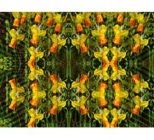 Kaleidoscopic Garden 25 Photographic Print