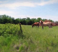 Summertime Grazing by Brian Fowler