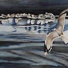 Seagulls On Ice by Phyllis Dixon