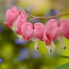 Bleeding Hearts by Tracy Jones