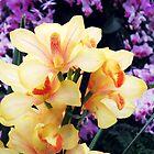 Botanical 4 by ElleEmDee