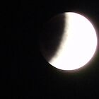 Lunar Eclipse Begins to Show Dark Side by Navigator