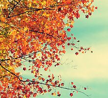 Pretty Autumn Colors 2 by ElleEmDee