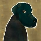 the black lab by bri-b