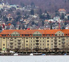 On Lake Zurich bank by magiceye