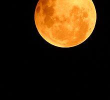 Moon by jimrac