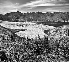 Spirit Lake at Mt. St. Helens by damhotpepper