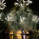 EPCOT FIREWORKS by fairielights