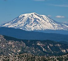 Mt. Adams snow covered by damhotpepper
