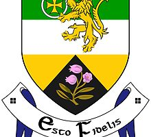 County Offaly Coat of Arms  by abbeyz71