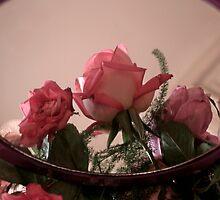 Rose Reflections by myraj