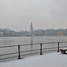 Hamburg Snow by vonb