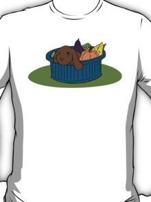 Bunny In A Bucket: Fall T-Shirt