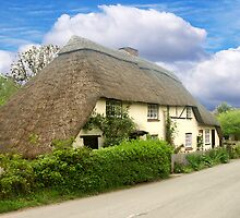 A Quaint Little Thatched Cottage by hootonles