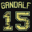 15 Gandalf by PaulRoberts