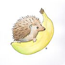 Hedgehog & Banana by Tim Gorichanaz