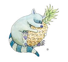 Raccoon & Pineapple Photographic Print