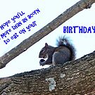 Birthday Card  by Susan S. Kline