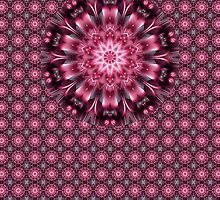 Pink Evolution Kaleidoscope by fantasytripp