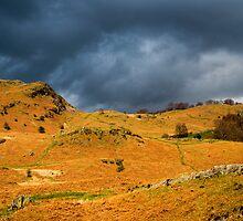 Fells above Elterwater by Nick Jenkins