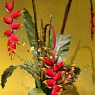USA. Philadelphia Flower Show 2014. Exotic Bouquet. by vadim19