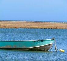 Green Boat by GleaPhotography