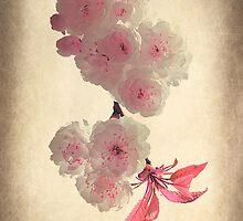Spring Blossom by Christine Lake